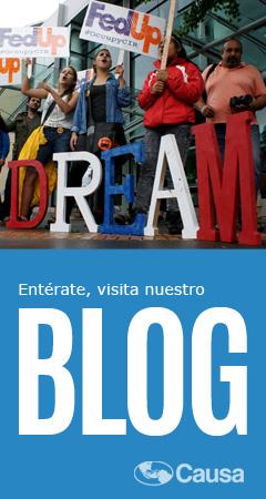 Visit Causa's Blog!